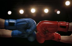 Close Up of Boxers Touching Boxing Gloves Before Fight